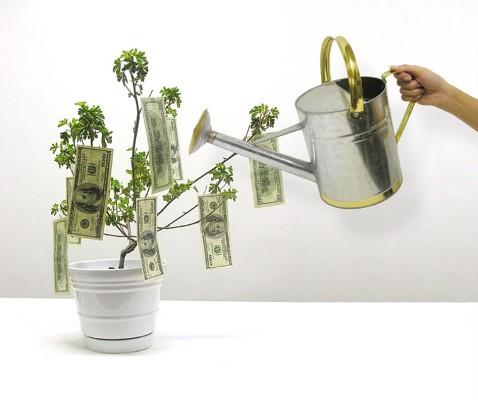 растим доллары