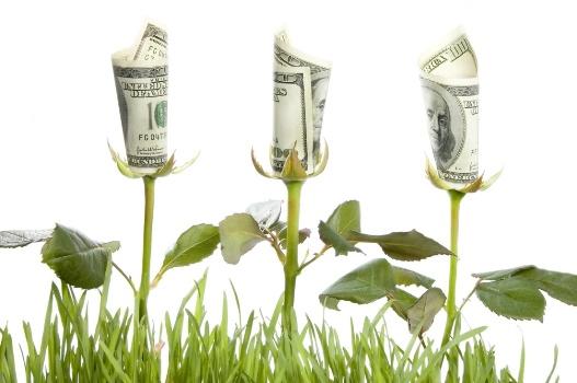 растут доллары