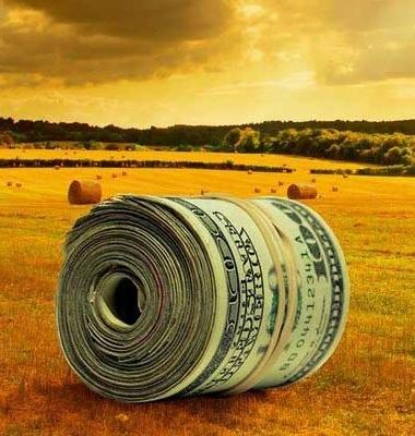 сноп из долларов